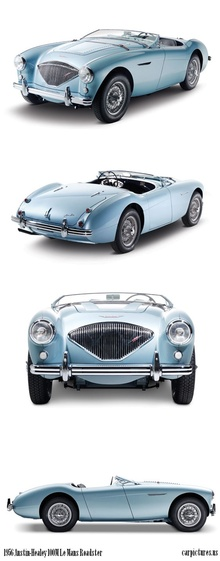 Could this be the most perfect car on the planet? 1956 Austin Healey 100-4 Le ...
