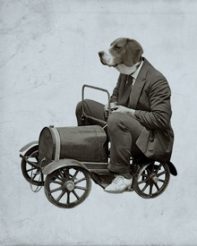 Dog driving an early pedal car. Others in the series include a rabbit. Don't ask.